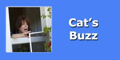 Cat Curry-Williams