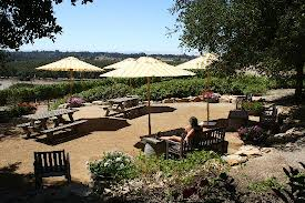 I love Laetitia Vineyards, Especially the beautiful tasting room and outdoor sipping area